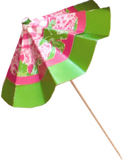 Lilly Pulitzer at PreppyPrincess.com