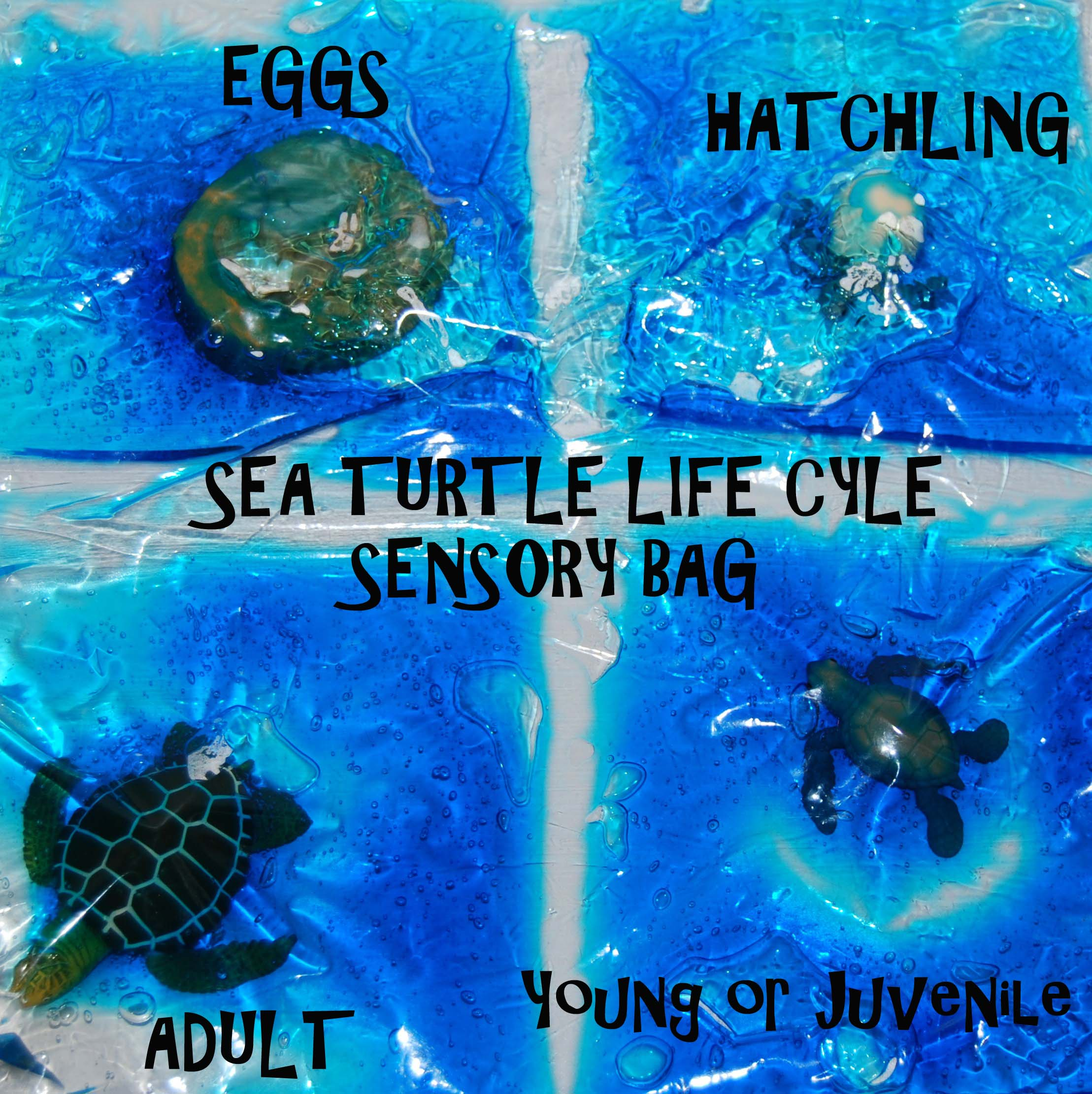Sea Turtle Sensory Bag The Preschool Toolbox Blog