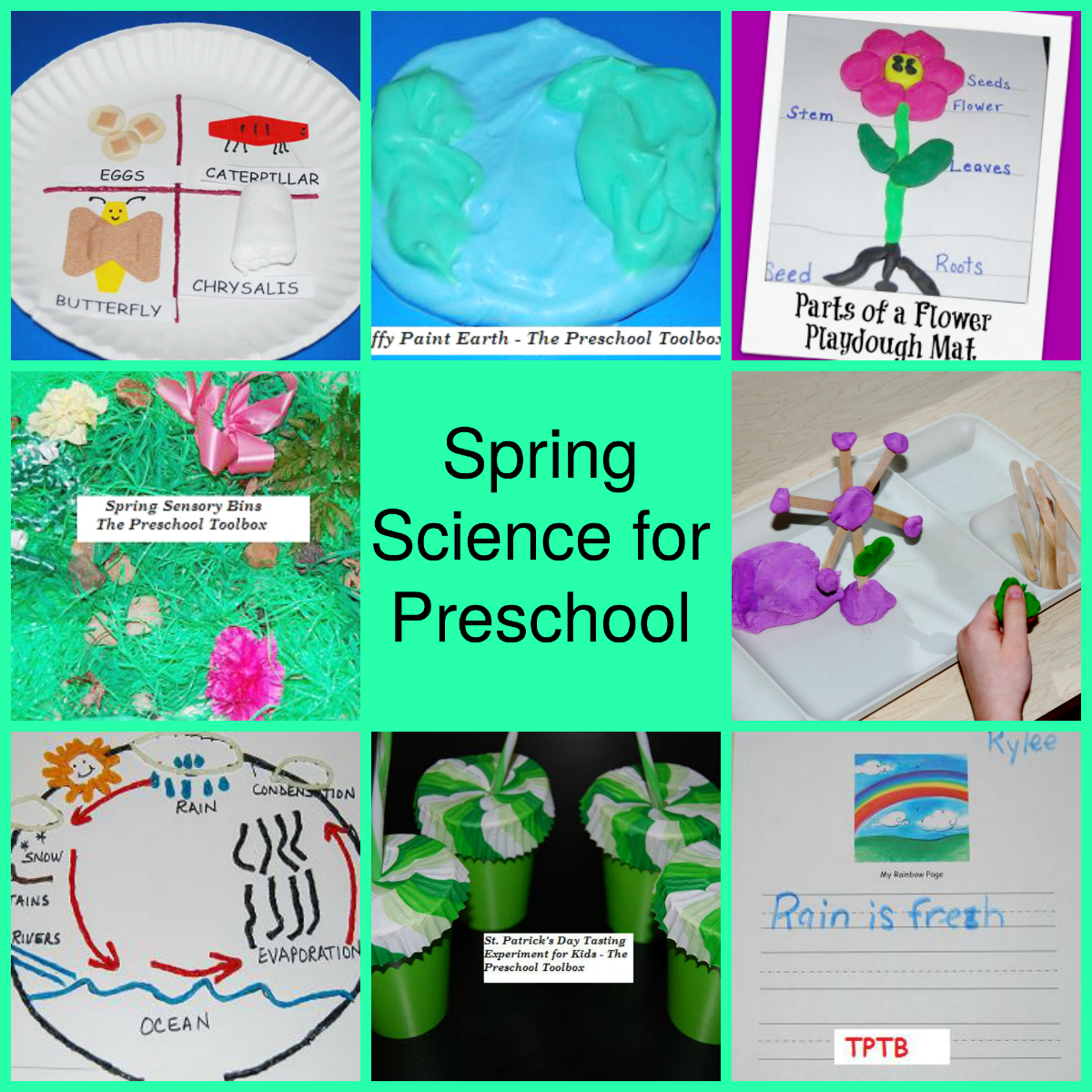 30 Science Explorations To Engage Preschoolers In Active