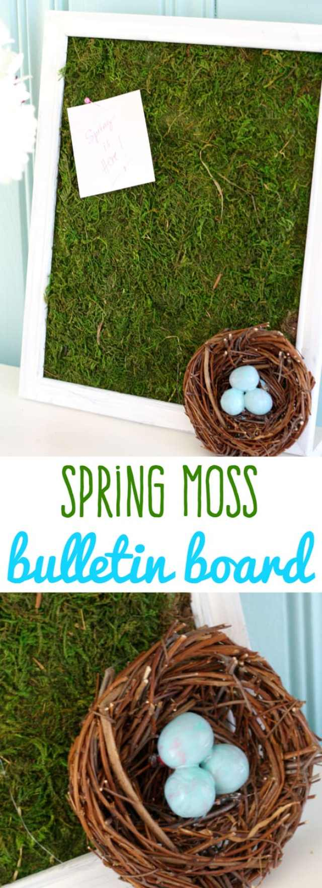 Make a very fresh and fun spring moss bulletin board! Easy and so cute for this time of year! #moss #spring