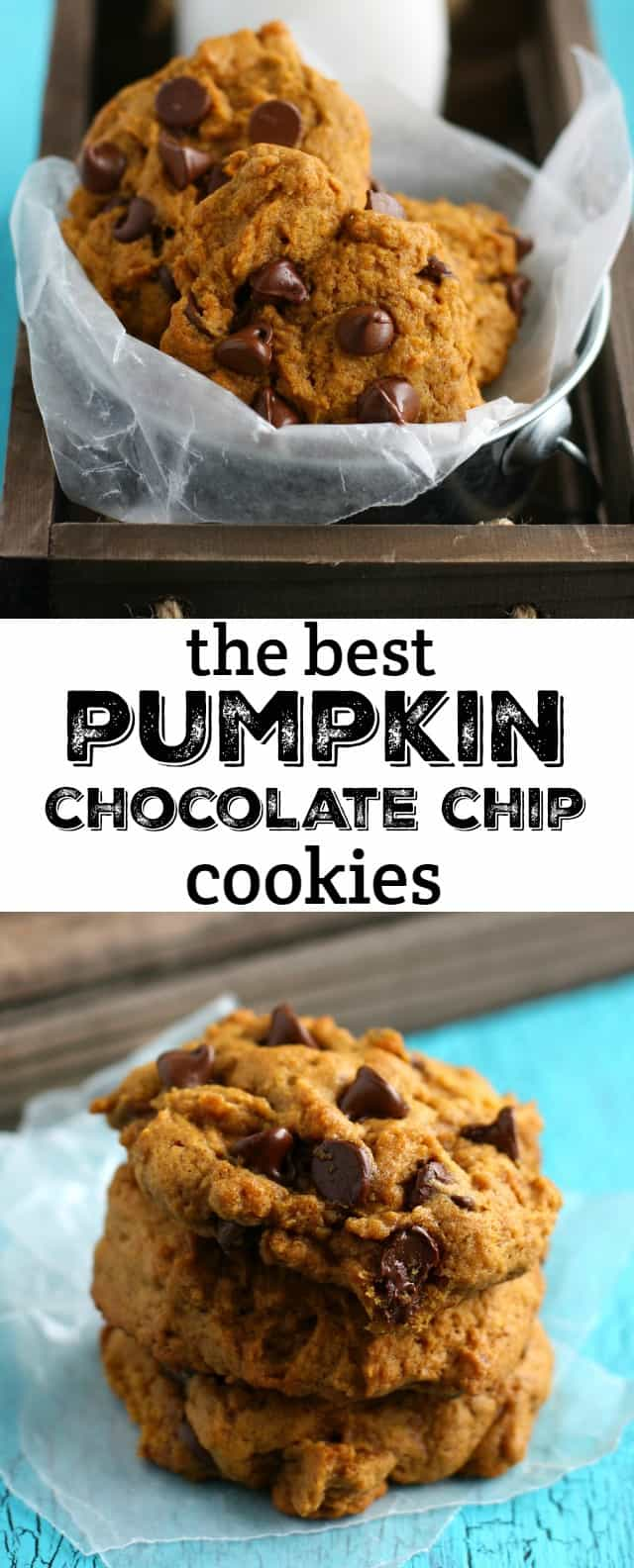 These pumpkin chocolate chip cookies are simply irresistible! Thick and delicious, and loaded with chocolate chips. These are gluten free and vegan, and everyone LOVES them!