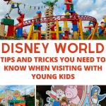 Disney World guide