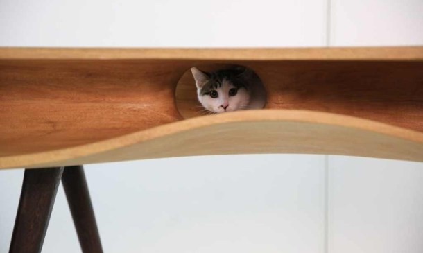 Modern-table-for-cats-6-1024x613