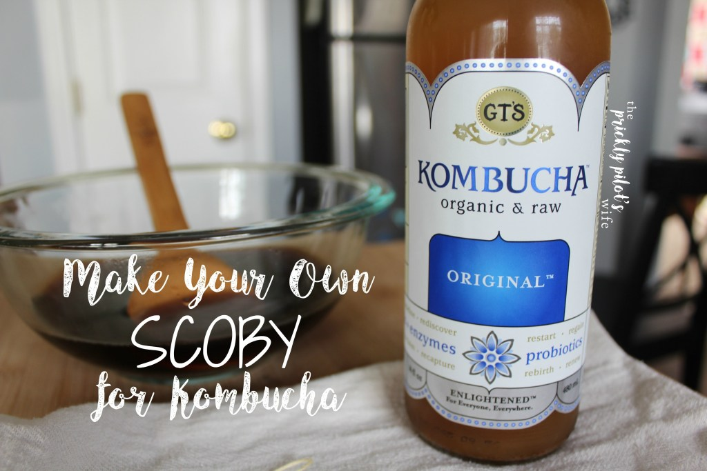 How to make your own SCOBY for Kombucha