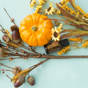 doTERRA Clove Essential Oil – Benefits and Uses