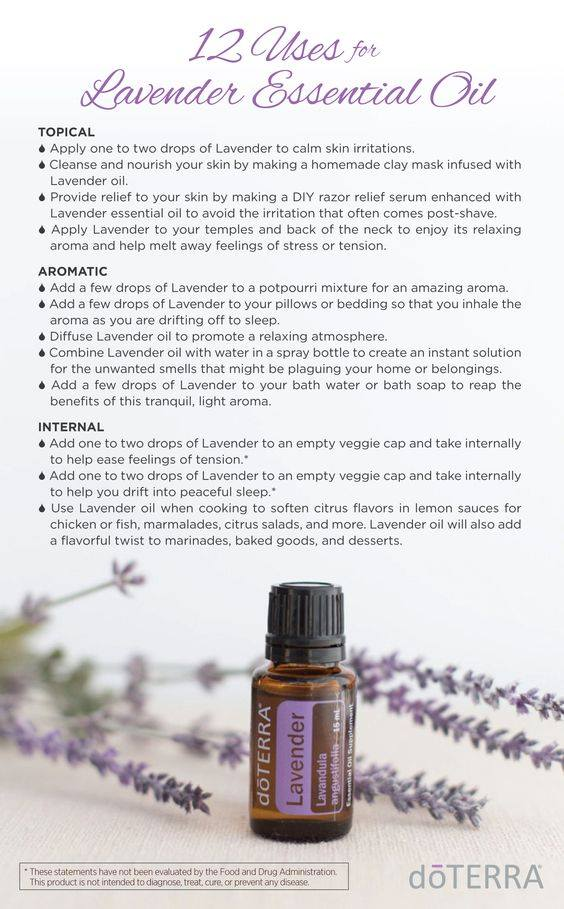 doterra lavender essential oil topical aromatic internal uses