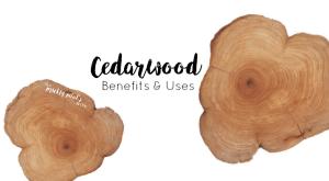 doTERRA Cedarwood Essential Oil – Benefits & Uses