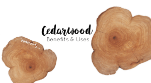 doTERRA Cedarwood Essential Oil – Benefits & Uses