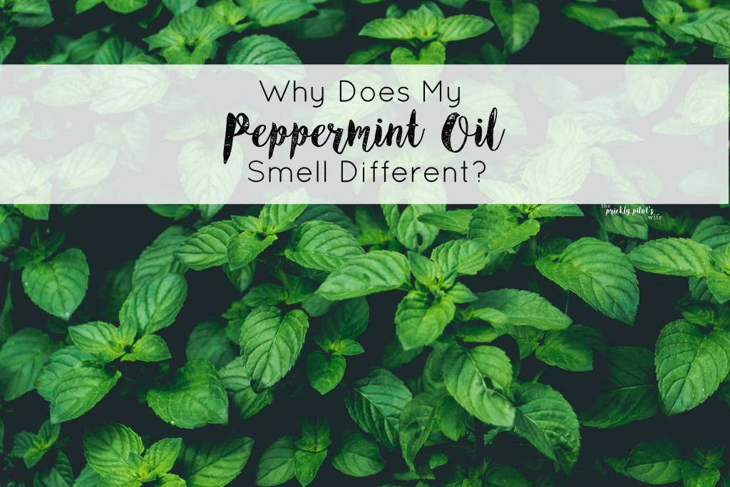 peppermint oil smell different