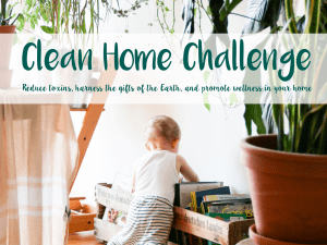 Clean Home Challenge