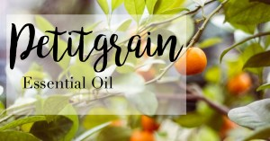 doterra petitgrain essential oil uses and benefits