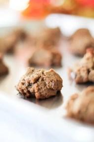 Paleo Chocolate Chip Cookies 04