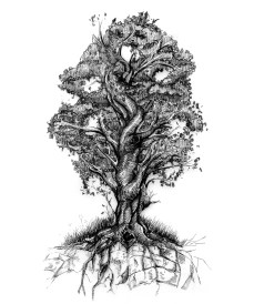 Illustration of the Tree of life by Gregory B. Stewart