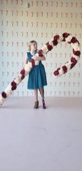 FlowerVaultXmas12