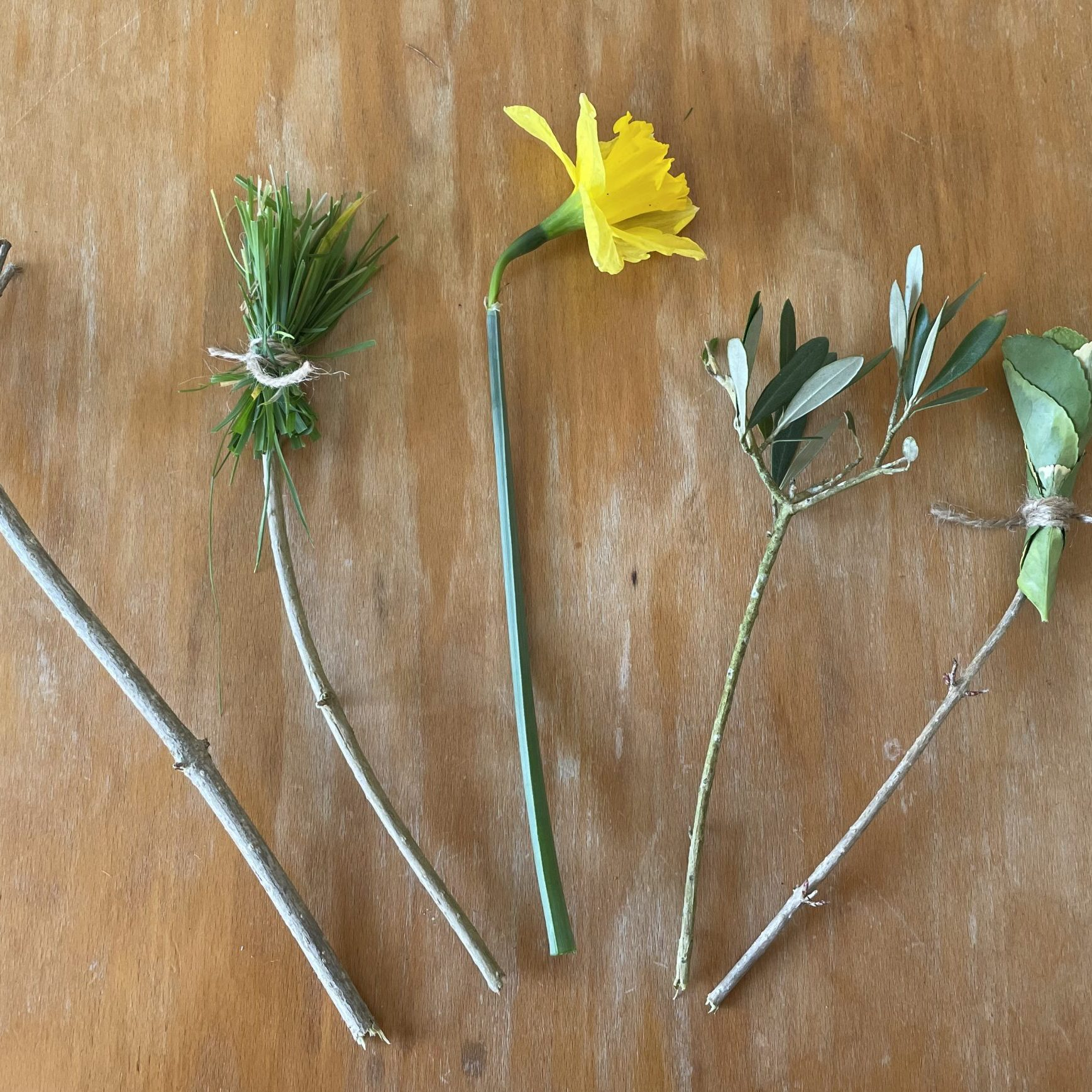 On a wooden table are paintbrushes made out of sticks, grass, leaves and a daffodil tied with twine