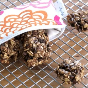 Banana breakfast cookies