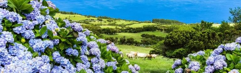azores holiday beauty of azores