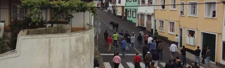 azores holidays rope bullfighting