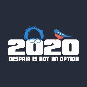 Bernie 2020.jpg