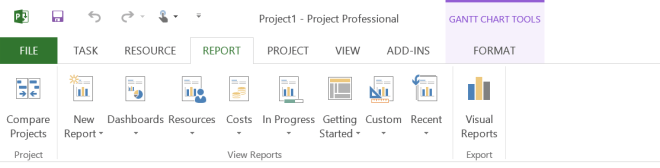 New Reports in Ms Project 2013