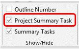 WBS_Project Summary Task