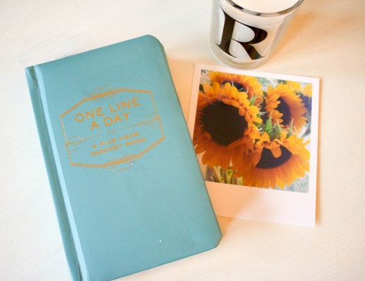 Reasons to Journal - The Project Lifestyle