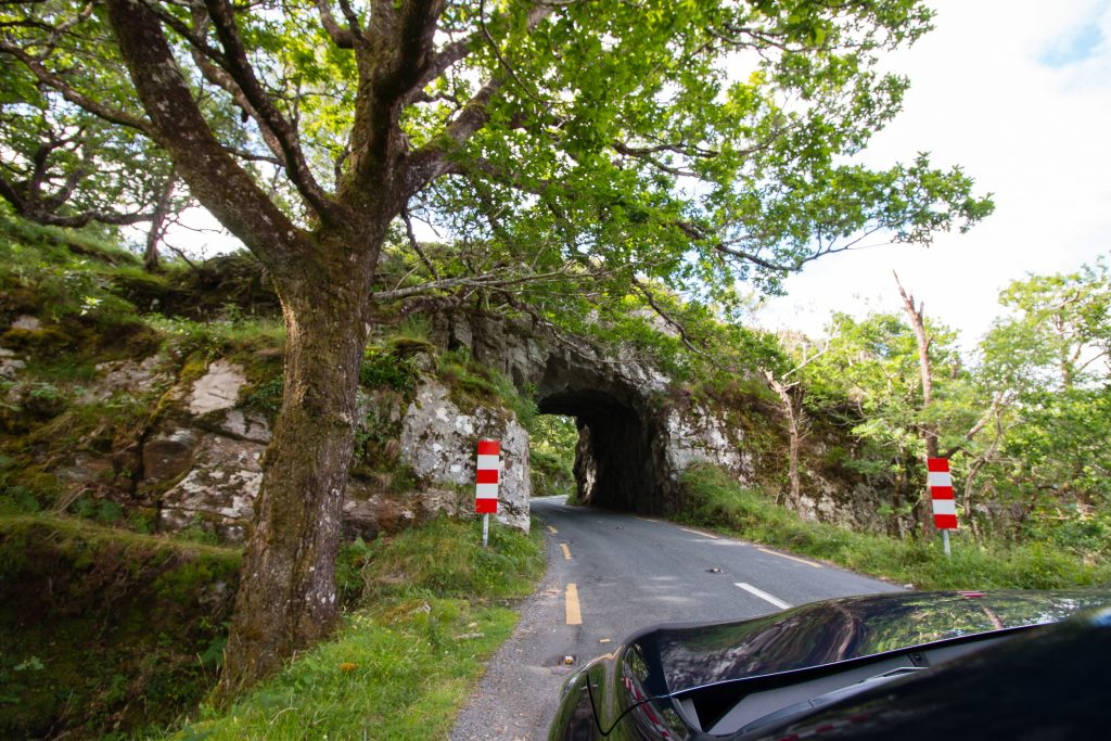 Killarney National Park - The Project Lifestyle