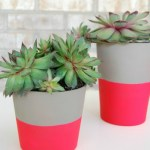 Tut Tuesday: DIY Dipped Neon Pots
