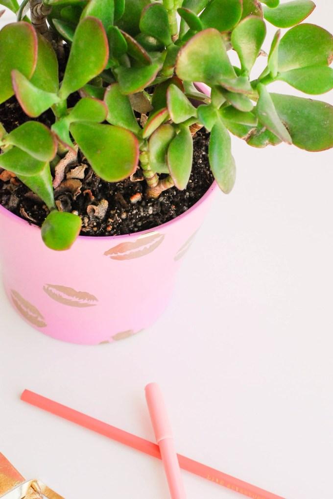 DIY Pucker Planter