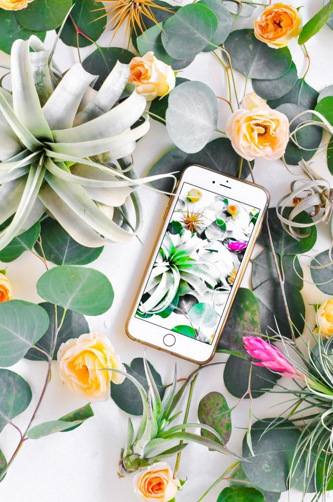 Botanical Wallpaper Download