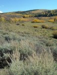 Colorado Wildlife Habitat Protection Program Requests 2016 Proposals