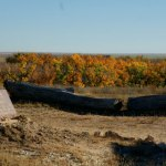 Free Guided Walking Tour of Sand Creek Massacre National Historic Site