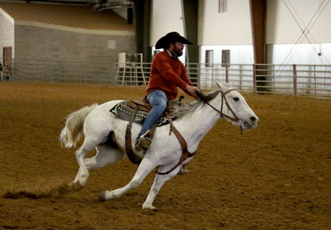 Matt Whittley, a sophomore HTM student from Syracuse, Kansas, demonstrates his specialized reining cow horse.