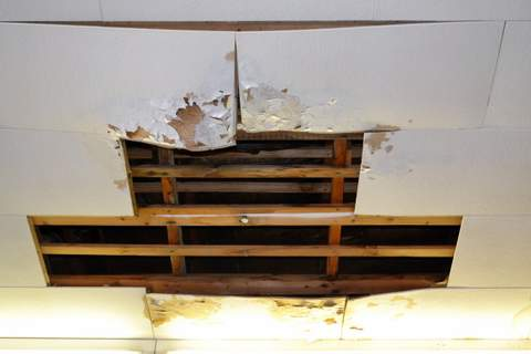 A Leaky Ceiling Along a Main Street Business