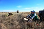 Four-Year Project with Kansas, USFS Hopes to Restore Plains Grouse