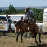 Bronc Riding Featured at Cowboy Up at the Wagons