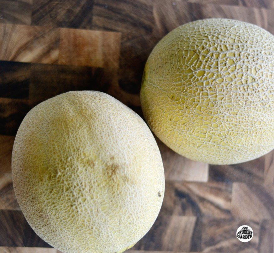 mypurchases-cantelope