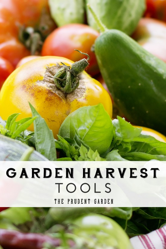 These garden harvest tools cost just a few dollars & save a lot of headache at picking time. See what you can buy, reuse, or make to streamline the harvest.