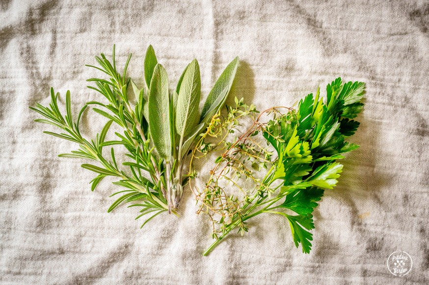Thanksgiving Herbs: Parsley, Sage, Rosemary & Thyme