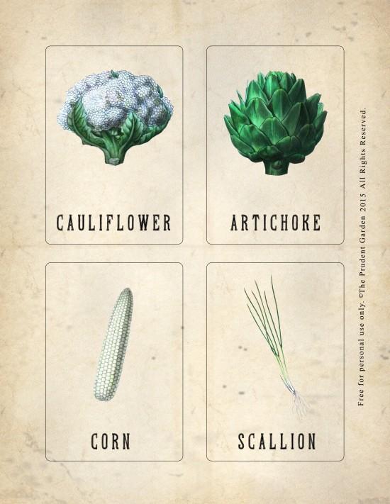 Garden_Nomenclature_Card_3