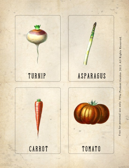 Garden_Nomenclature_Card_5