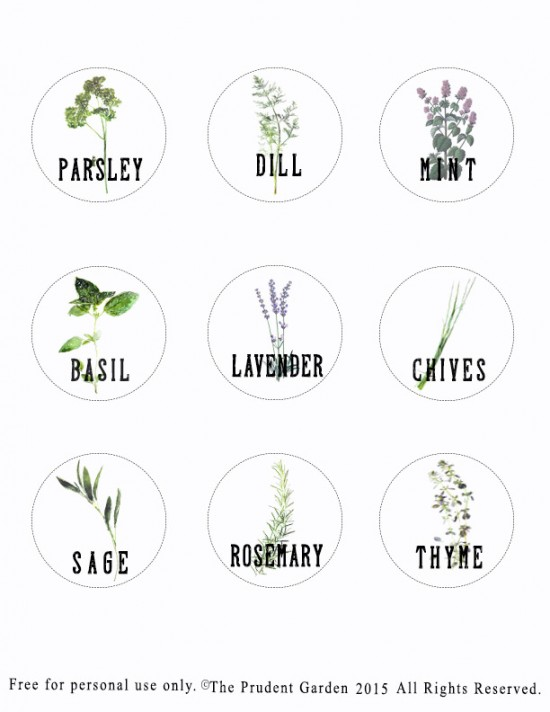 Mason Jar Plant Labels2