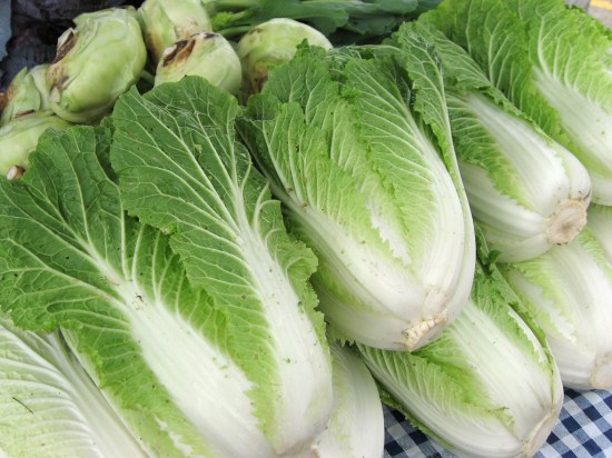 This is how napa cabbage should look.