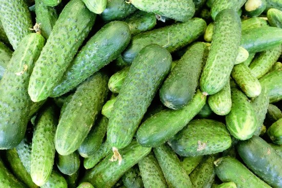 Choosing Cucumbers For Your Garden