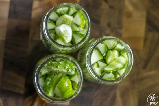 Small Batch Refrigerator Dill Pickles