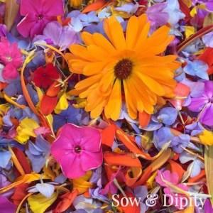 Flowerfetti