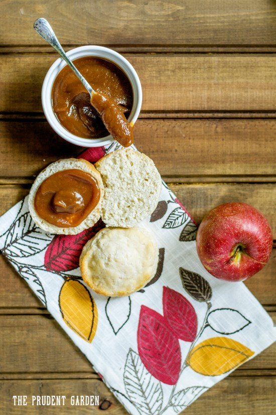 Make a batch of delicious caramel apple butter in a crockpot!  Crockpot apple butter is a cinch to make and a great way to preserve apples this fall.