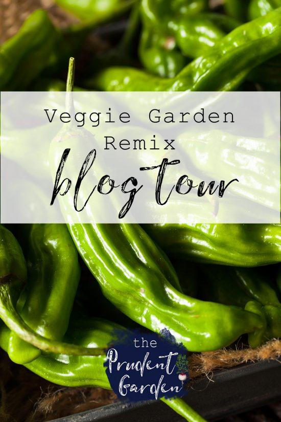 Veggie Garden Remix Blog Tour