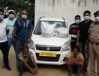 मेवात में 6 किलो गांजा सहित दो गिरफ्तार, एक वैगनआर भी बरामद