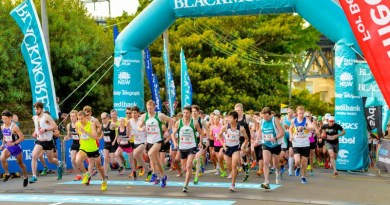Raise money for Westmead Medical Research Foundation by signing up for the Blackmore's Running Festival.